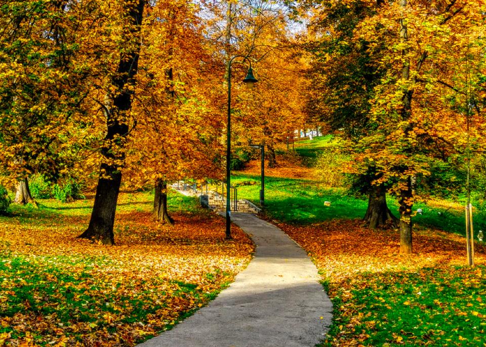 Park in The Queensway